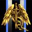 Seraphim Initiative
