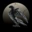 Dark Crows