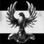 Black Kite Guard