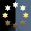 Starr Guild