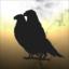 Malicious Eagles