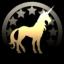 Pony Pro