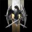 Blackhawk Eight