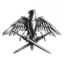 Eagle Division