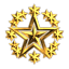 Domination Navy