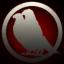Birds of the Northen Lights