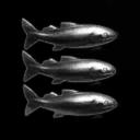 Bluefin Technologies Inc.