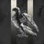 Raven's INN