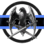 Silver Valkyrie Enterprises