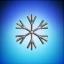 Snowflake Co.
