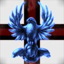 Nebula falcon
