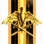 Gallente Auxiliary Vanguard