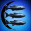 Sociedade Secreta da Baleia