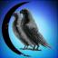 Cresent Hawks