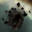 Gallente Freighter Wreckage