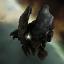 Elite Federation Arcus