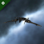 Gecko icon