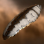 Amarr Providence Freighter