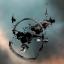 Nestor Battleship Wreck